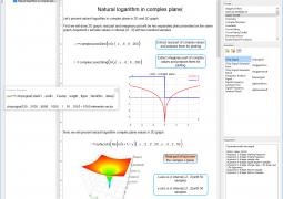 natural-logarithm-02